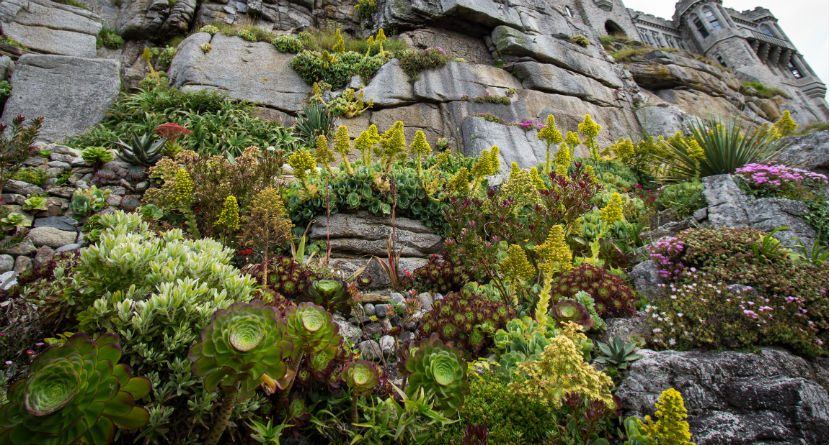 St Michael S Mount Cornwall Places To Visit