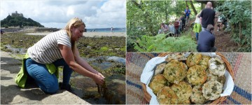 Foraging on St Michael's Mount